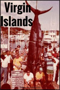 World Record Marlin