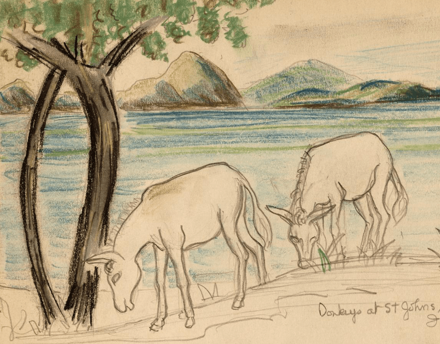Artist, Margaret Casey Gates sketches in the US Virgin Islands ~ 1936
