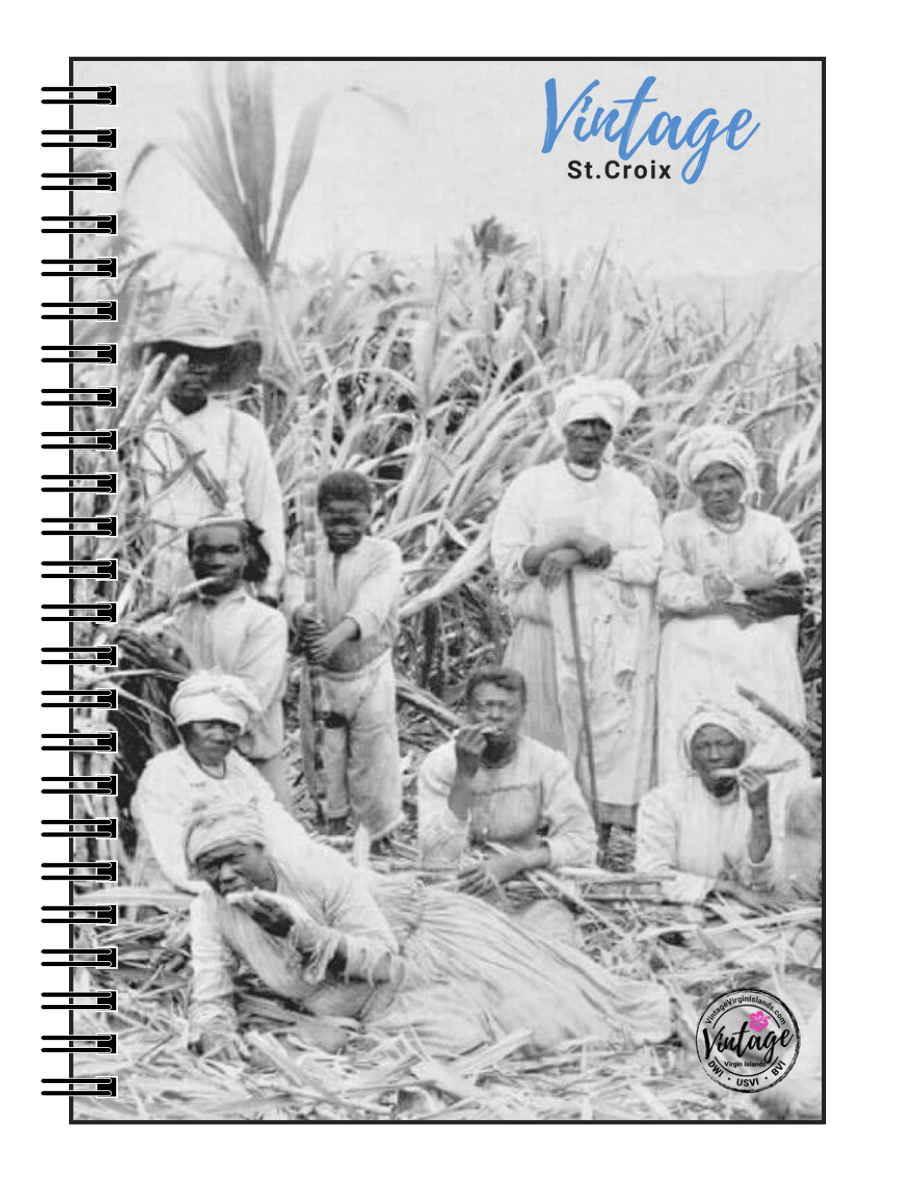 Sugarcane Notebook, St. Croix, US Virgin Islands, Danish West Indies