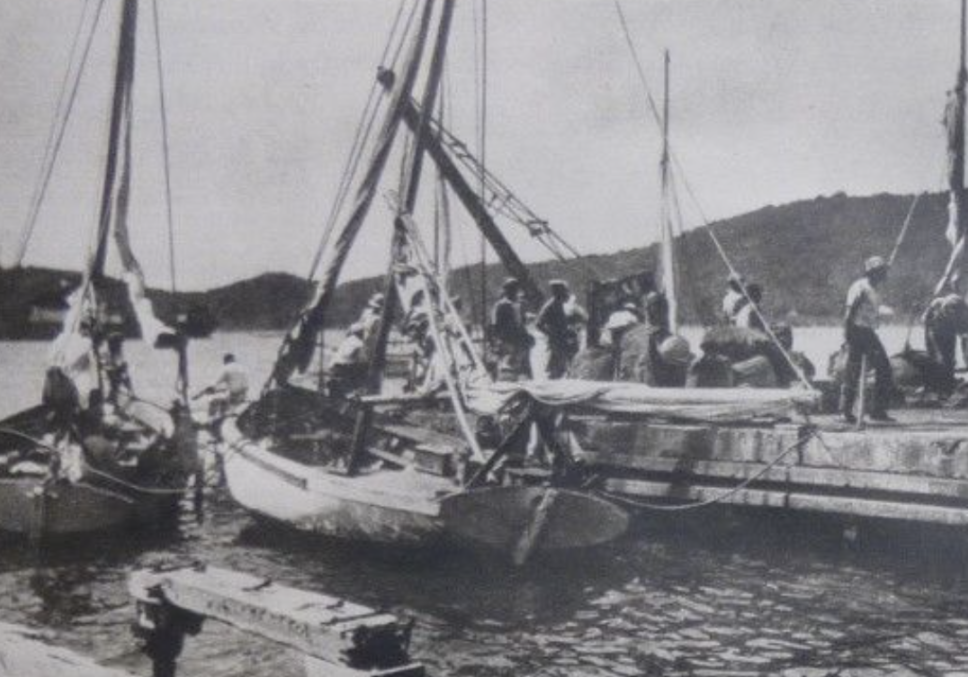 Carrying Cane Workers between the Dominican Republic and the British Virgin Islands